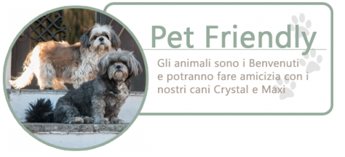 pet-friendly-crystal-maxi